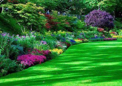 jardines.19